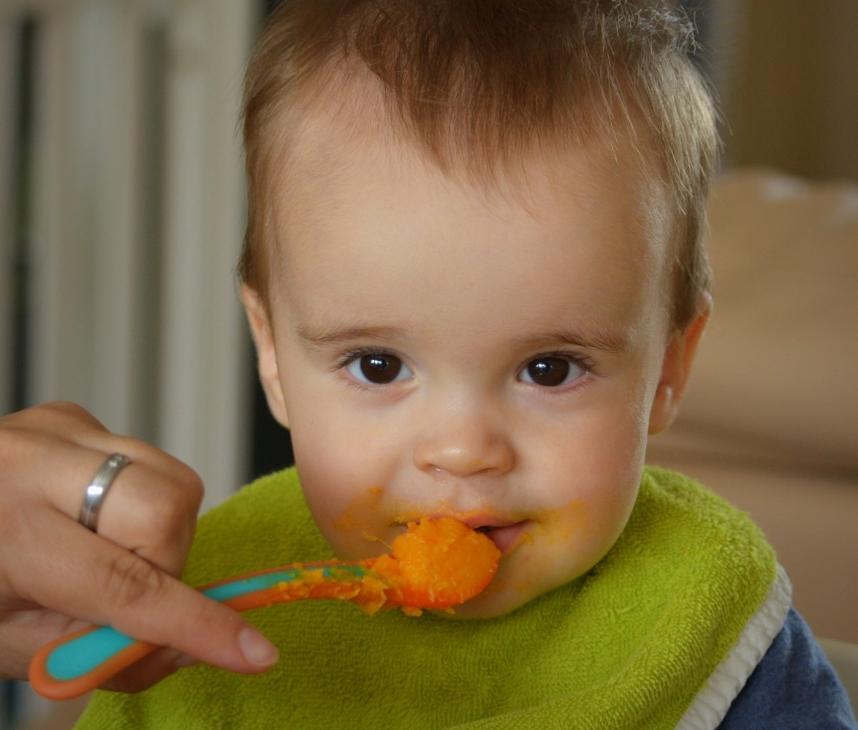 Resep Mpasi untuk Bayi 9 Bulan, 15 Ide yang Kaya Nutrisi ...